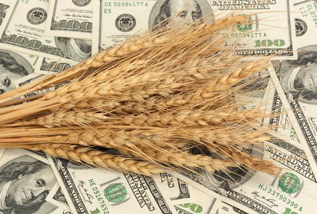 Зарубежный опыт продаж земли сельскохозяйственного назначения