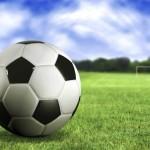 Законопроект о легионерах в российском спорте должен быть рассмотрен до конца весенней парламентской сессии