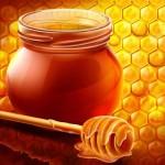 Коммунисты представили проект федерального закона, который будет регламентировать отечественное пчеловодство
