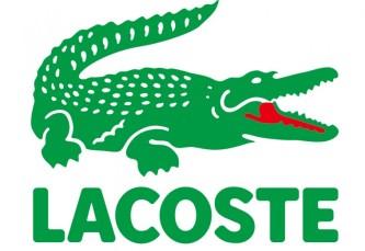 Польской компании «Mocek and Wenta» запрещено использовать в логотипе изображение каймана