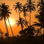 Ростуризм не объявлял Гоа опасным для туристов местом